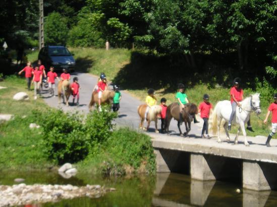 vers le marché du village a poney