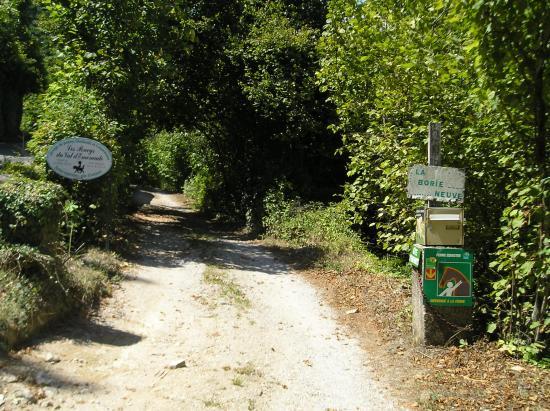 le parc de la propriété