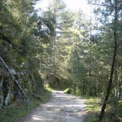 les chemins de la Borie Neuve