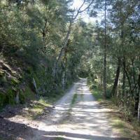 chemin de la Borie Neuve