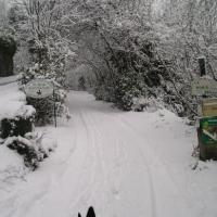 l'hiver dans les Cevennes