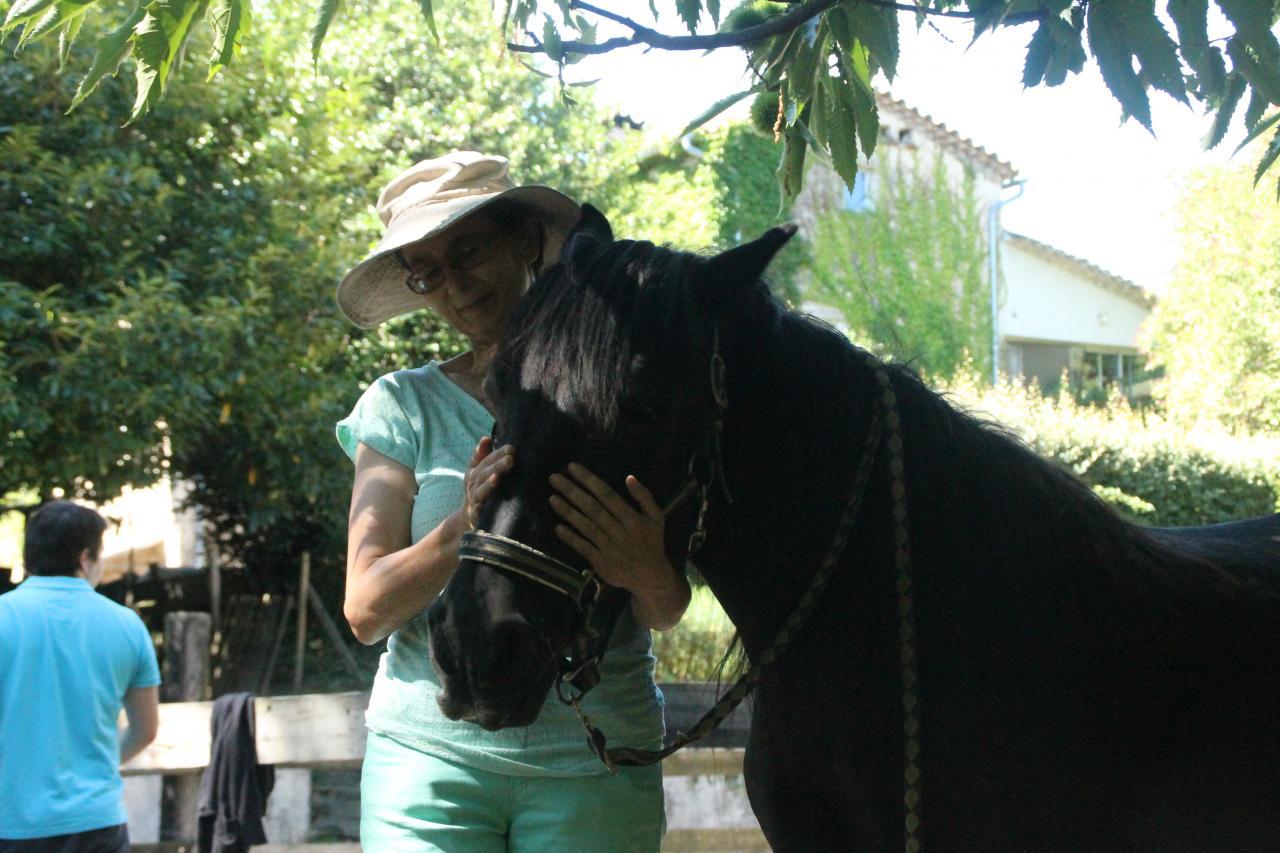 moi et enok