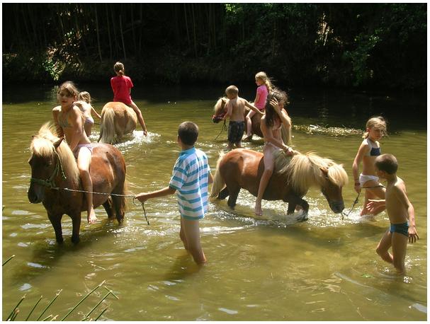 riviére du village avec les poneys