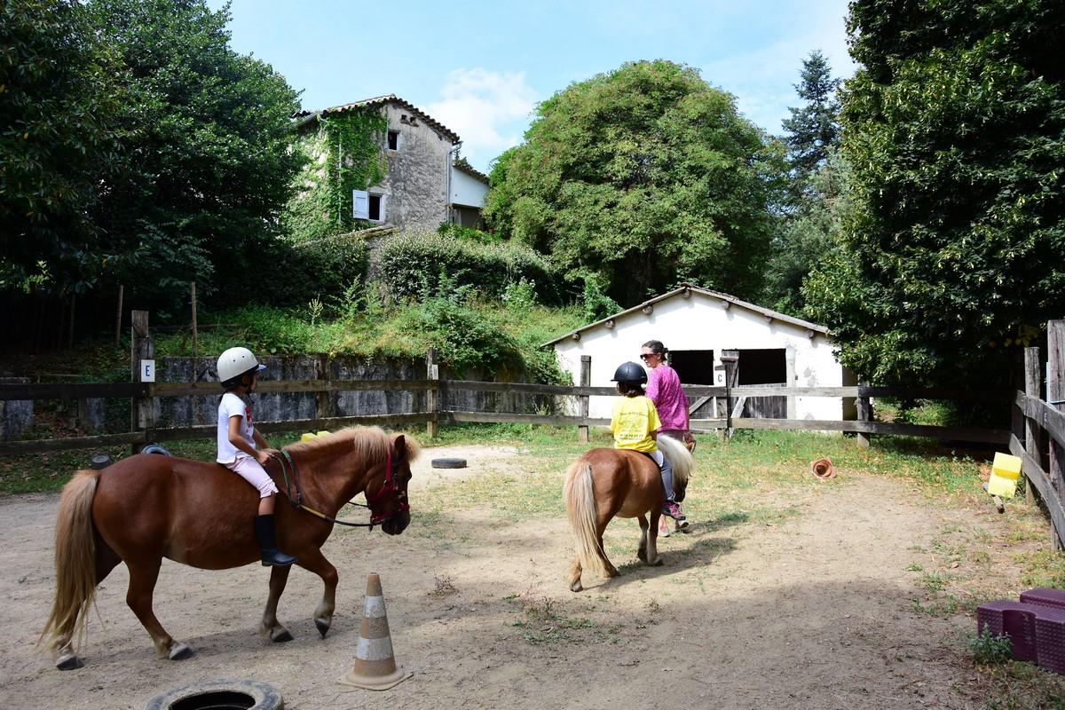 Poneys emeraude poneys stage